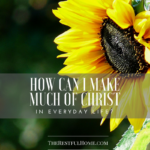 How Can I Make Much of Christ in Everyday Life?