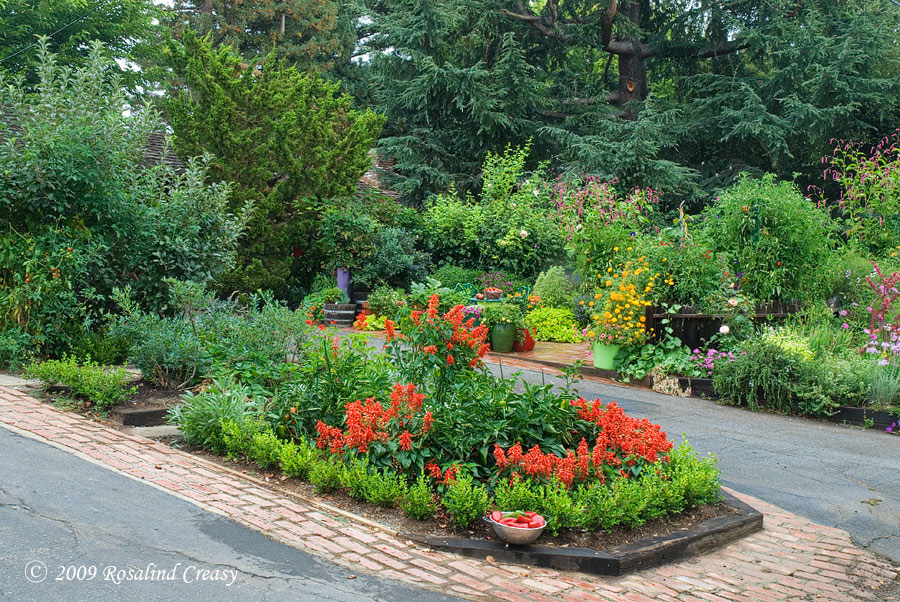 Edible landscape inspiration the restful home Flowers to plant in vegetable garden