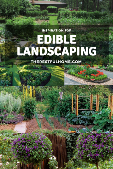 edible landscape inspiration the restful home