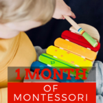 One Month of Montessori Activities for Your Toddler