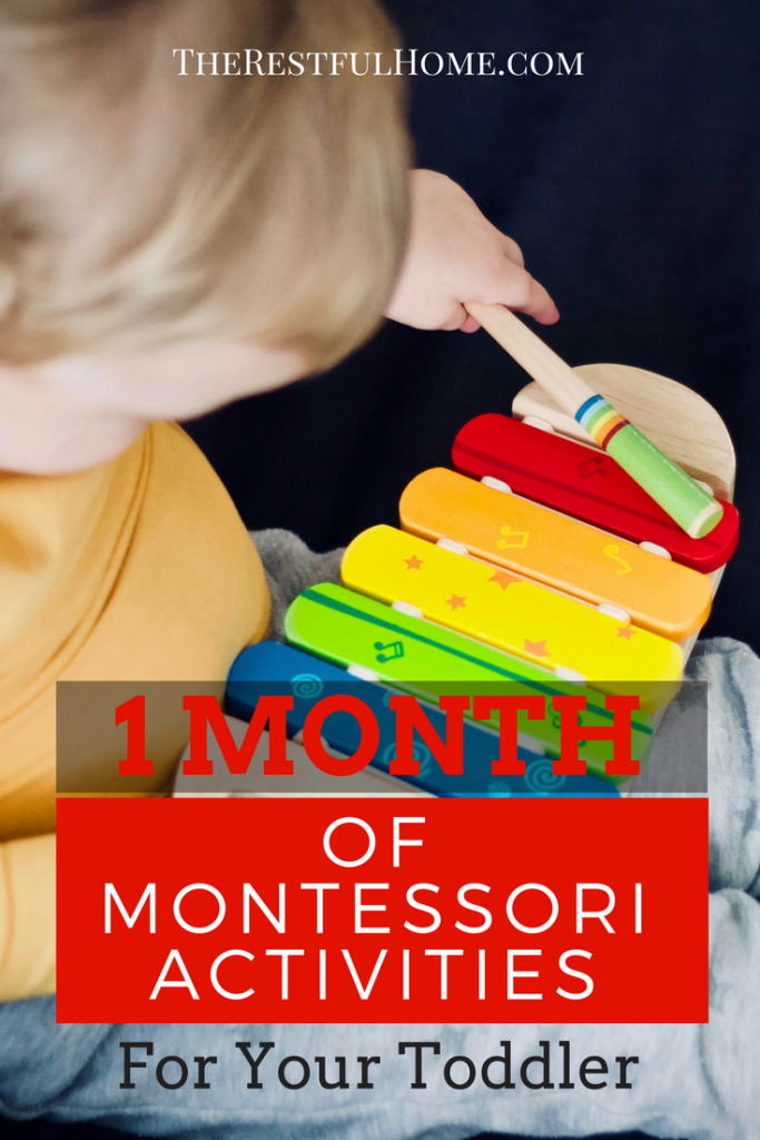 Montessori activities inspired by Maria Montessori