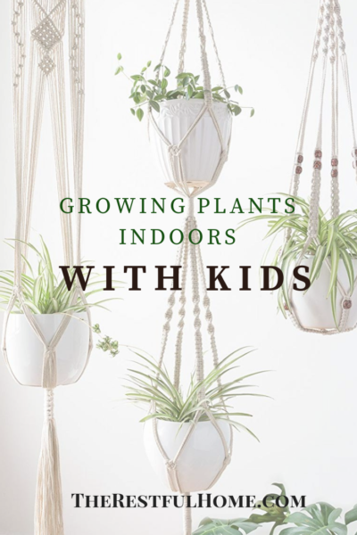 growing plants indoors with kids graphic
